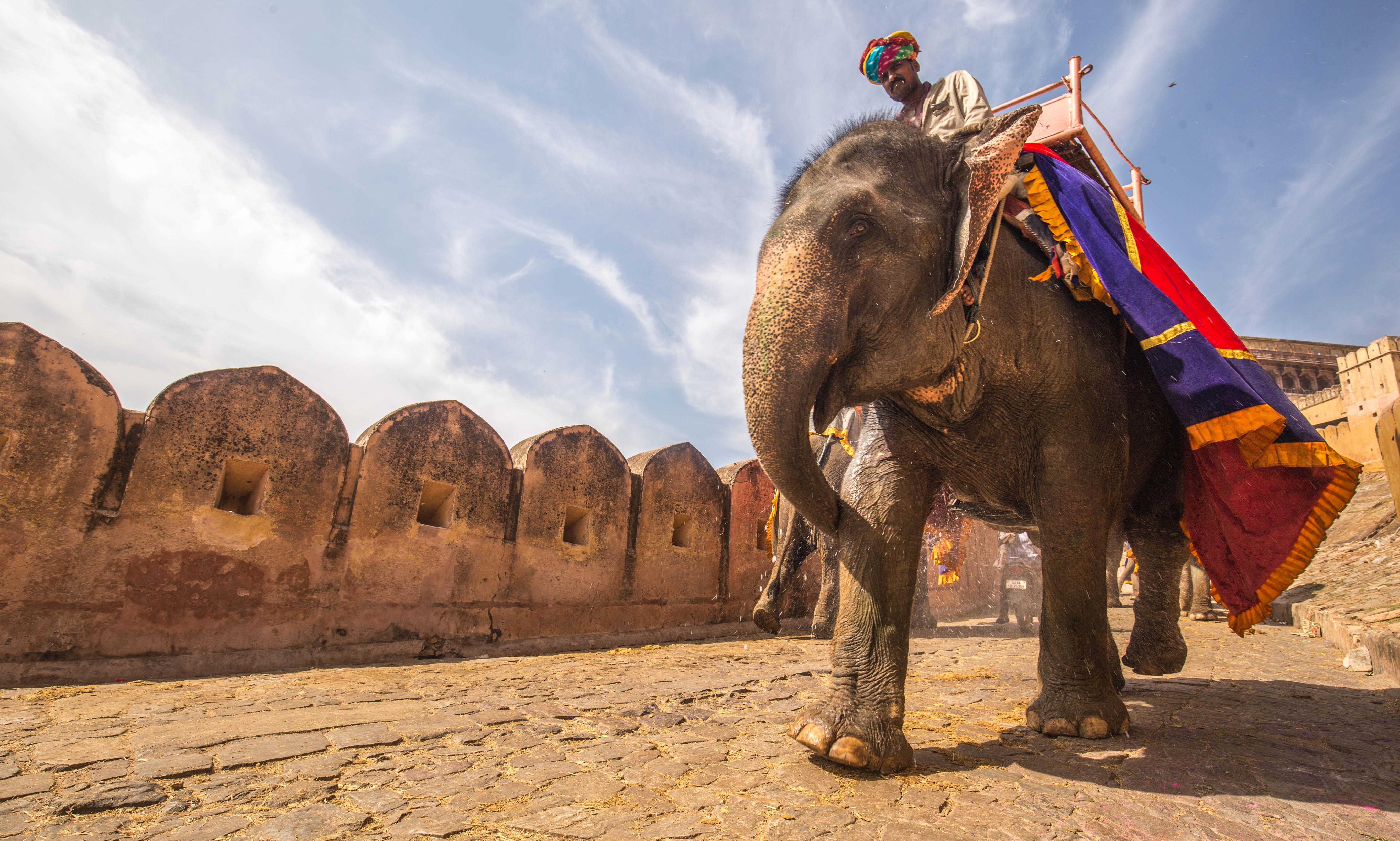 4 Städte für eine unbezahlbare Erfahrung in Indien