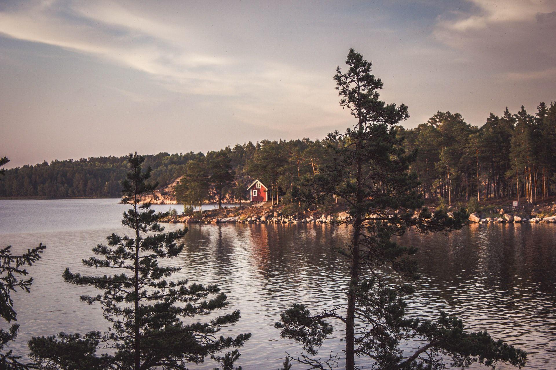 Schwanensee im schwedischen Tümpel